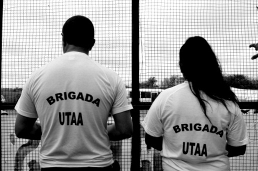 miniatura_brigada